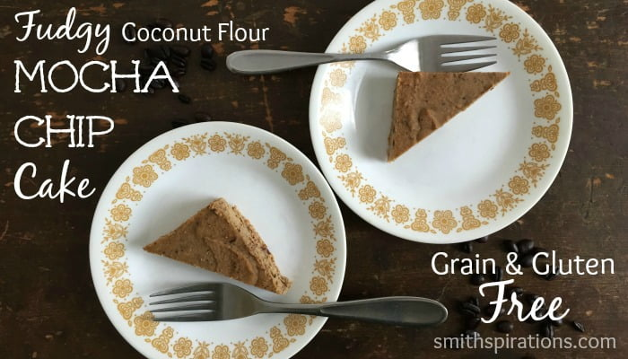 Fudgy Coconut Flour Mocha Chip Cake 2