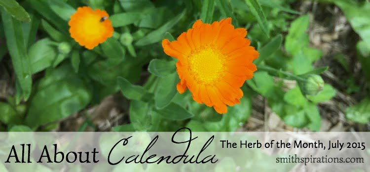 Call About Calendula 2