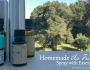 Homemade Air Freshener Spray with Essential Oils 2