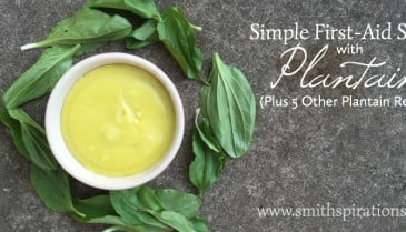 Simple First-Aid Salve with Plantain