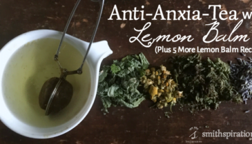 Anti-Anxia-Tea with Lemon Balm. This delicious herbal tea help melt away occasional stress and anxiety while promoting better rest and digestion. A great way to end the day!