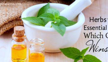 Herbs v Essential Oils