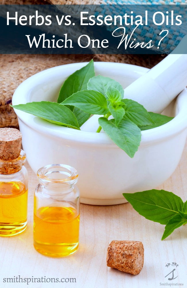 Herbs vs. Essential Oils Which One Wins