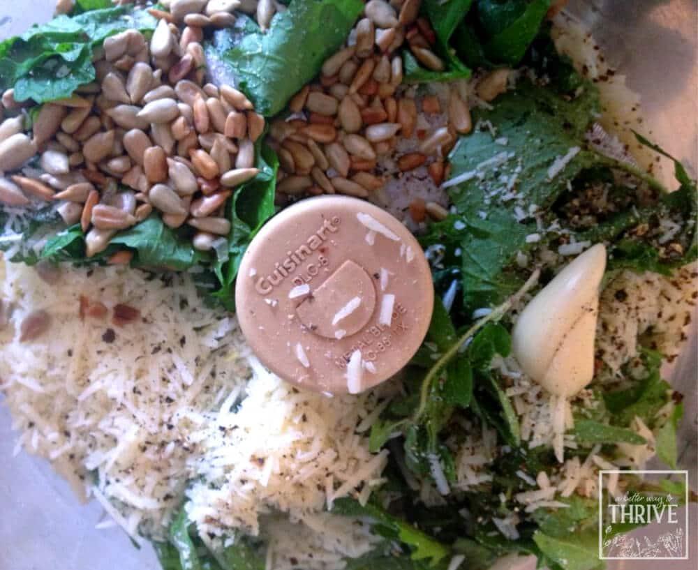 garlic mustard pesto ingredients in food processor
