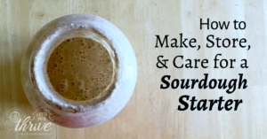 How to Make, Store, & Care For a Homemade Sourdough Starter