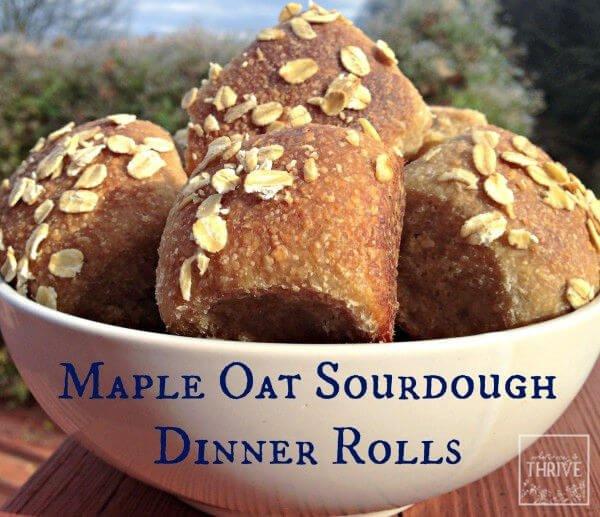 Maple oat sourdough dinner rolls