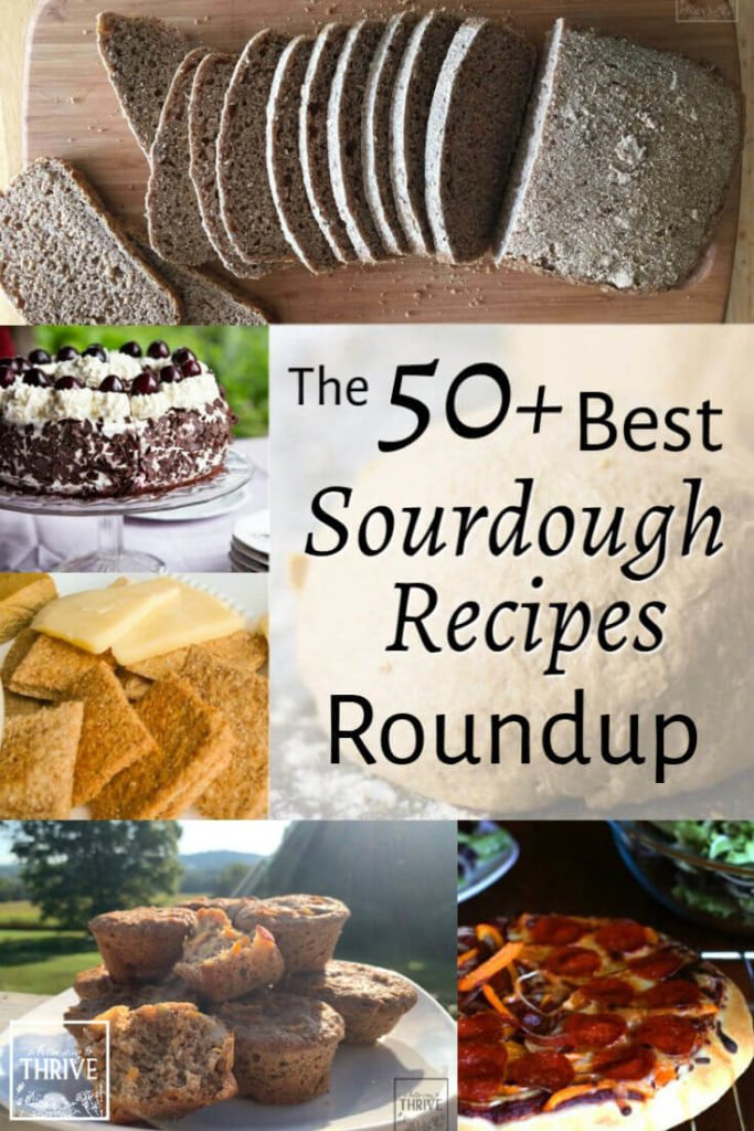 The 50+ Best Sourdough Recipes Roundup