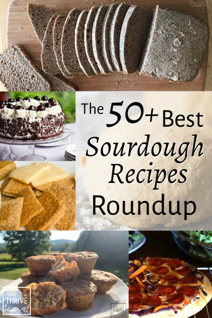 Let your sourdough imagination run wild with this roundup of the best sourdough recipes. These are some of the best sourdough recipes the internet has to offer: nutritious, easy for the home baker, and packed with incredible flavor! Breads, biscuits, rolls, muffins, cakes, and more are waiting for you here. Give one a try tonight! via @abttrway2thrive