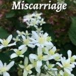 To the Heartbroken Woman Walking Through Miscarriage