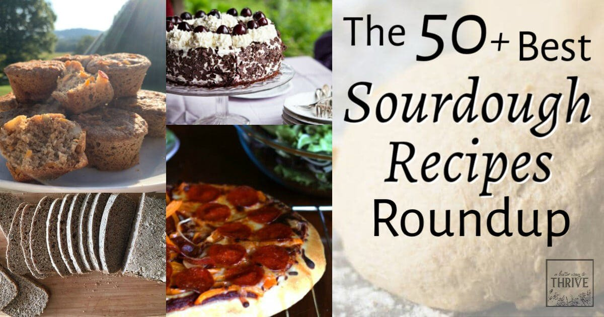 The 50+ Best Sourdough Recipes That Will Have You Baking Tonight